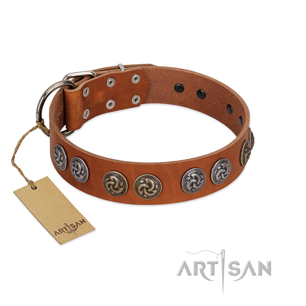 Daily use top notch natural leather dog collar with adornments