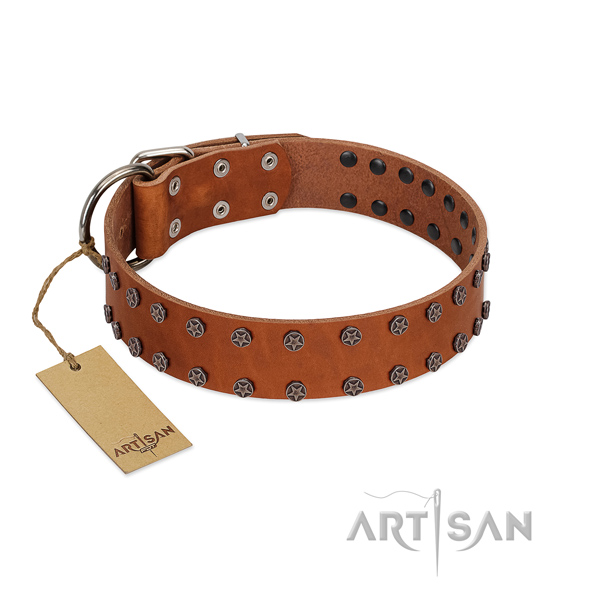 Incredible genuine leather dog collar