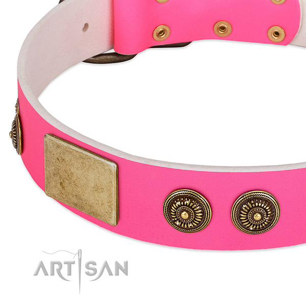 Comfortable dog collar created for your beautiful doggie