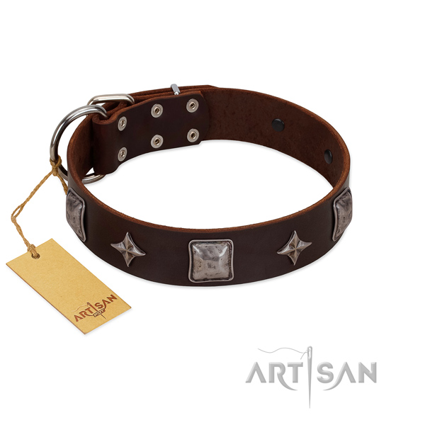 Awesome natural leather collar for your beautiful pet