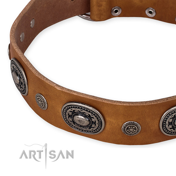 Top rate leather dog collar handcrafted for your lovely four-legged friend