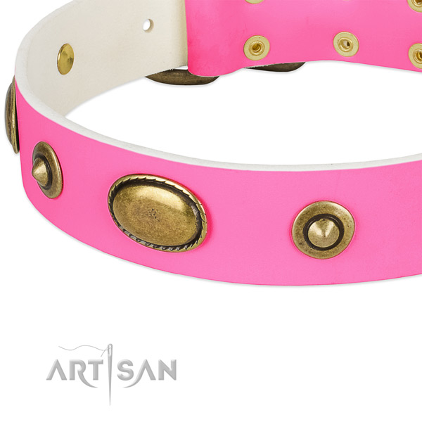 Corrosion resistant buckle on leather dog collar for your doggie
