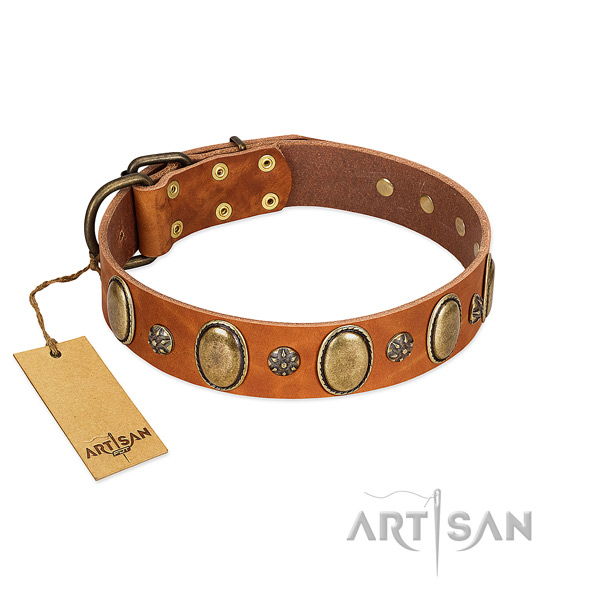 Stylish walking high quality full grain genuine leather dog collar with embellishments