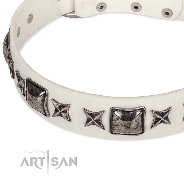 Comfy wearing embellished dog collar of top quality full grain natural leather