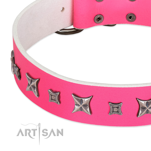Daily use decorated natural leather collar for your doggie