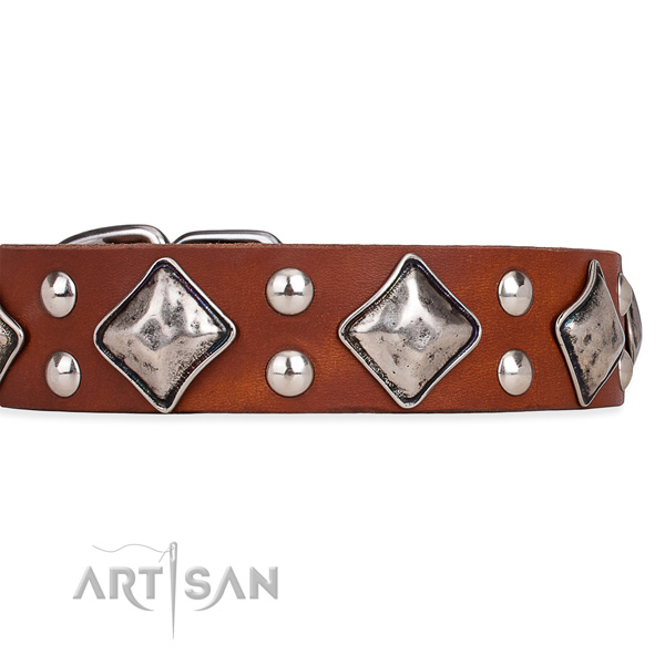Natural leather dog collar with unique corrosion resistant embellishments