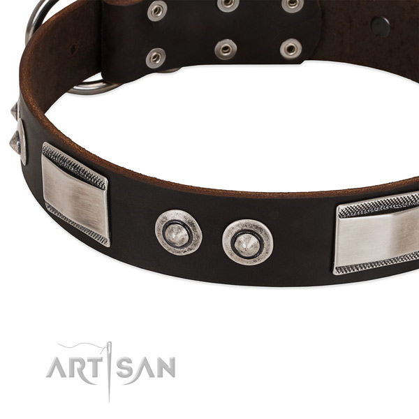 Amazing natural leather collar for your pet