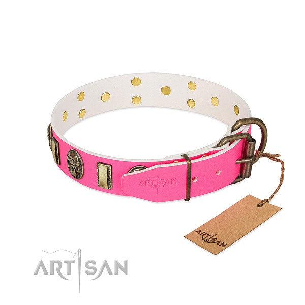Reliable fittings on full grain leather dog collar for your dog