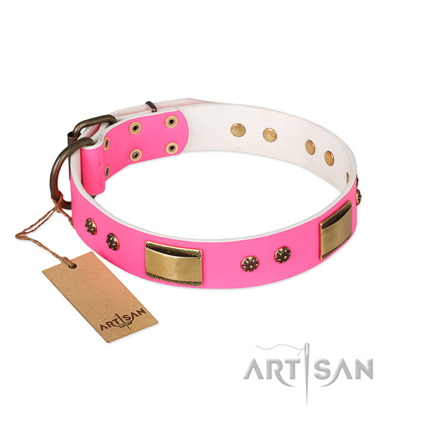 Exquisite genuine leather collar for your pet