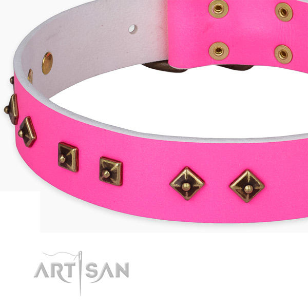 Unusual full grain natural leather collar for your attractive four-legged friend