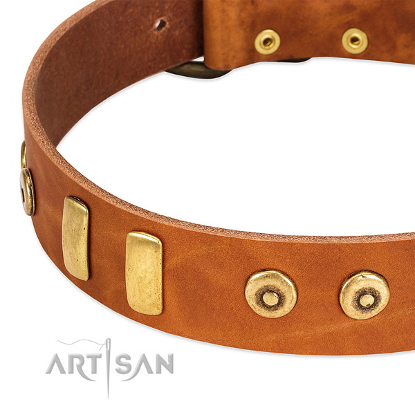 Soft genuine leather collar with awesome decorations for your dog