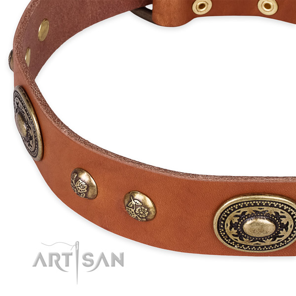 Significant natural leather collar for your lovely pet