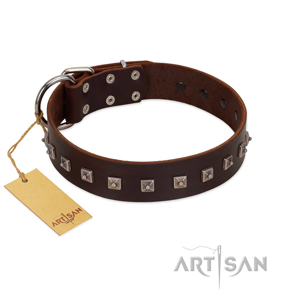 Inimitable adorned natural leather dog collar