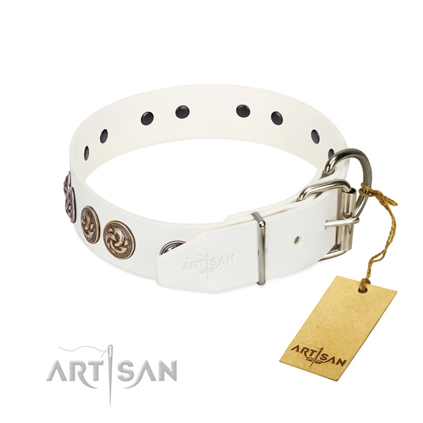 Corrosion resistant traditional buckle on fine quality full grain leather dog collar