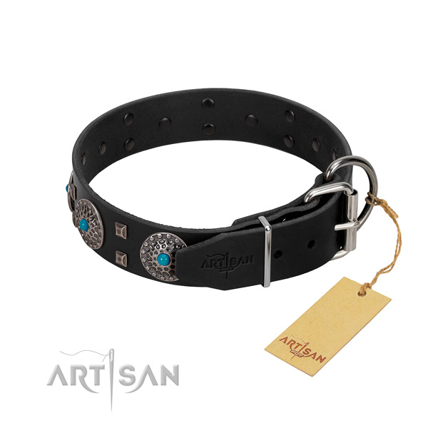 Top notch genuine leather dog collar with adornments for daily use