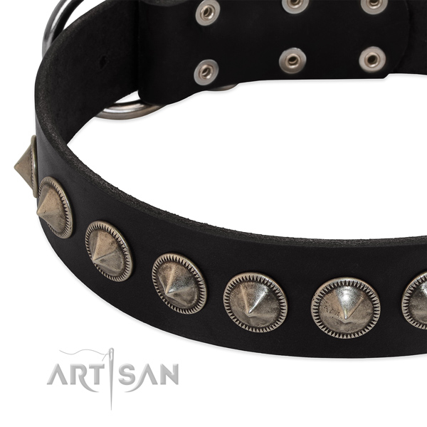 Easy wearing adorned genuine leather collar for your doggie