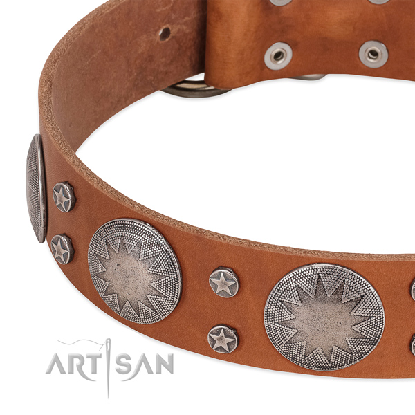 Flexible full grain leather dog collar with rust-proof buckle