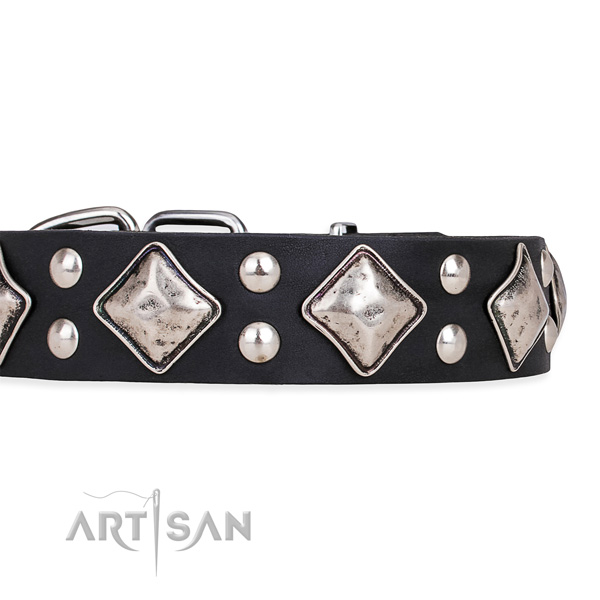 Natural leather dog collar with inimitable corrosion proof decorations