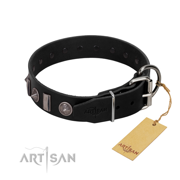 Reliable leather dog collar with studs for your stylish canine