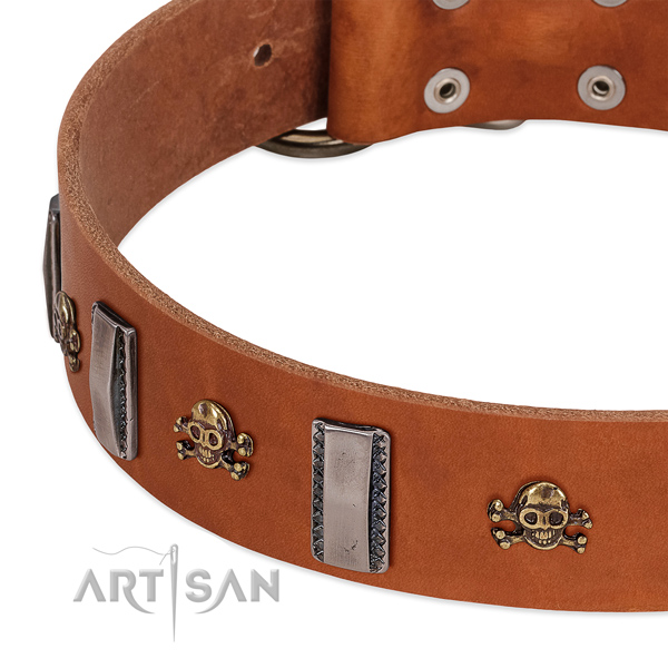 Exquisite studs on full grain leather dog collar for comfortable wearing