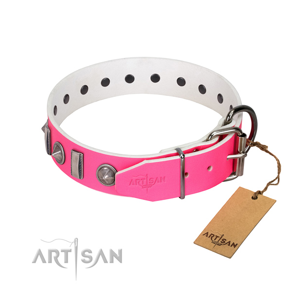 Walking natural leather dog collar with inimitable studs