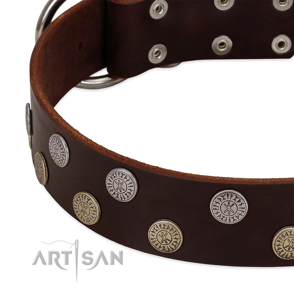 Flexible full grain natural leather dog collar with studs for your handsome four-legged friend