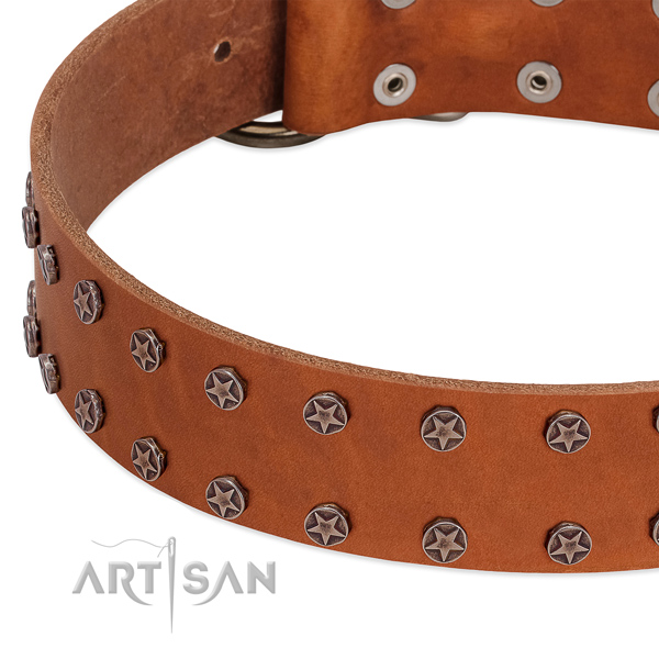Flexible full grain genuine leather dog collar with embellishments for your dog