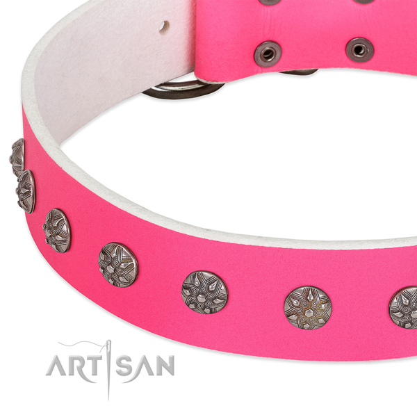 High quality genuine leather dog collar with studs for your doggie