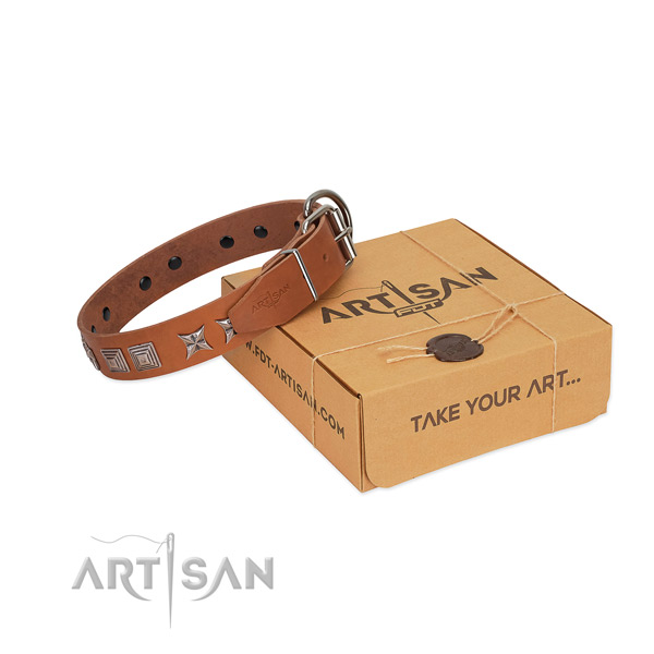 Leather dog collar with top notch adornments created four-legged friend