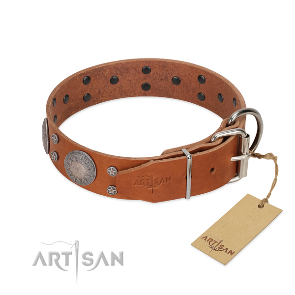 Rust-proof buckle on leather dog collar for everyday walking