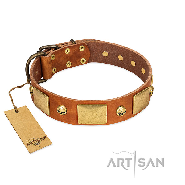 Quality full grain genuine leather dog collar with corrosion proof studs