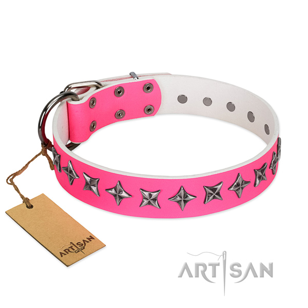 Quality leather dog collar with awesome embellishments