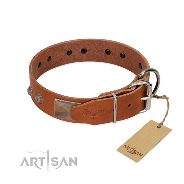 Awesome full grain genuine leather dog collar for stylish walking your doggie