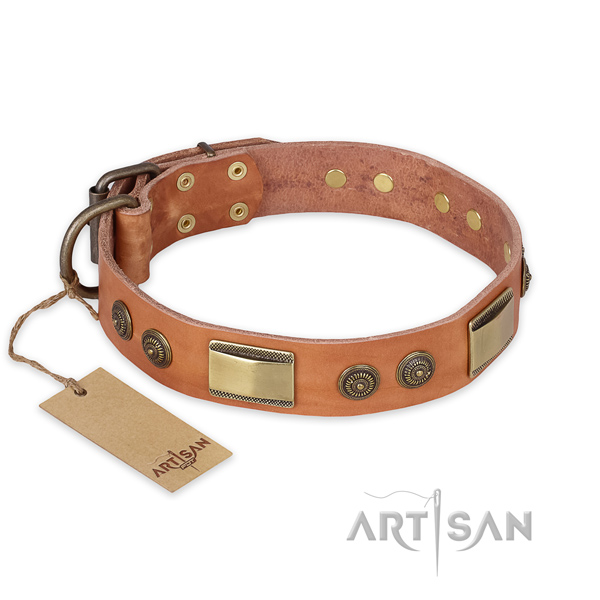 Significant full grain genuine leather dog collar for daily walking