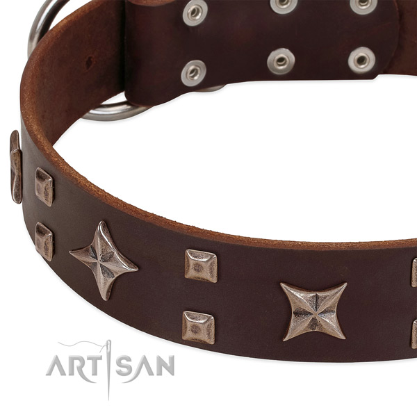 Corrosion proof fittings on genuine leather collar for walking your pet