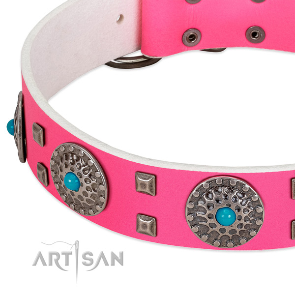 Quality full grain natural leather dog collar with significant studs