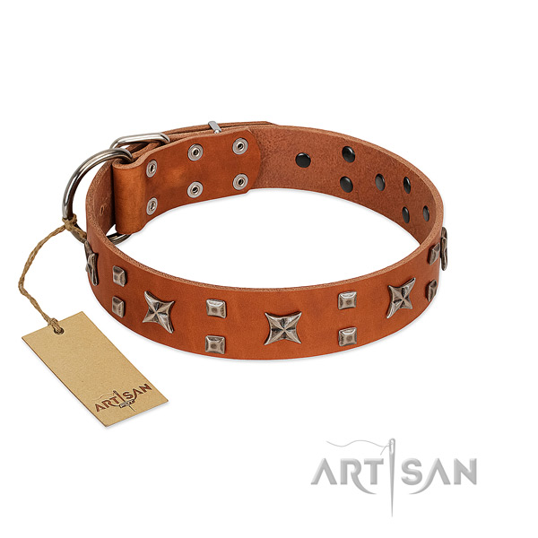 Top rate natural leather dog collar with studs for stylish walking