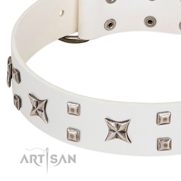 Top rate natural leather dog collar with decorations for daily walking