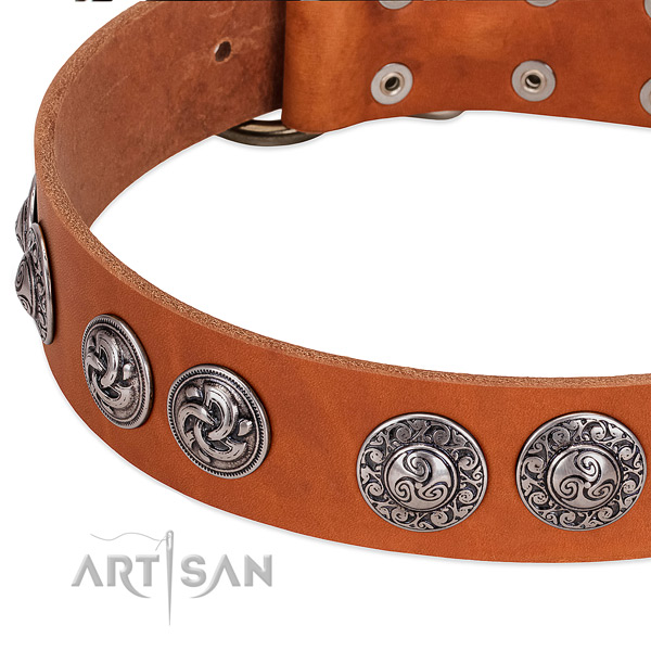 Remarkable full grain genuine leather dog collar for easy wearing