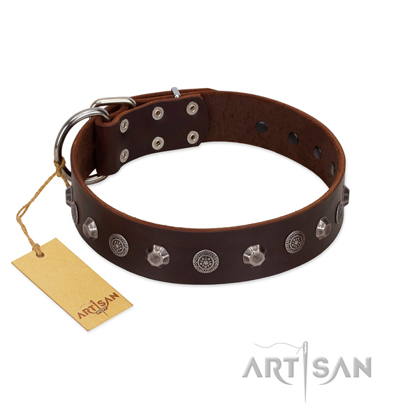 Fashionable natural leather dog collar