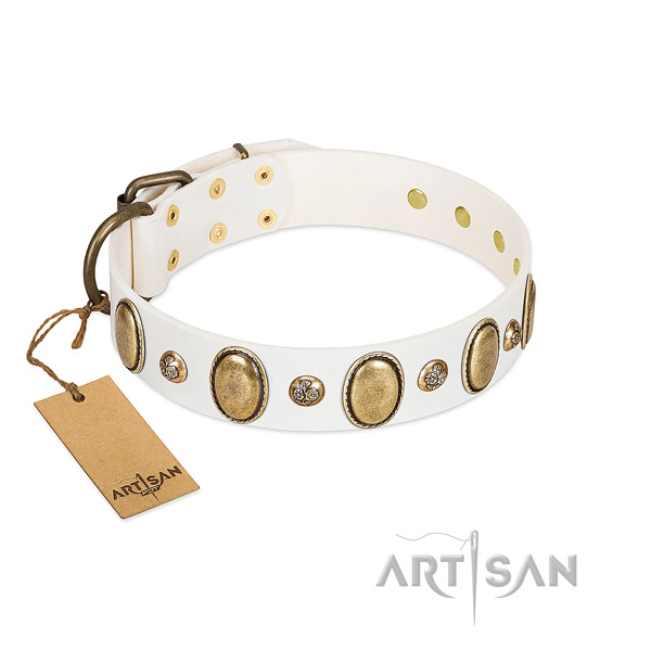 Natural leather dog collar of top rate material with unusual embellishments
