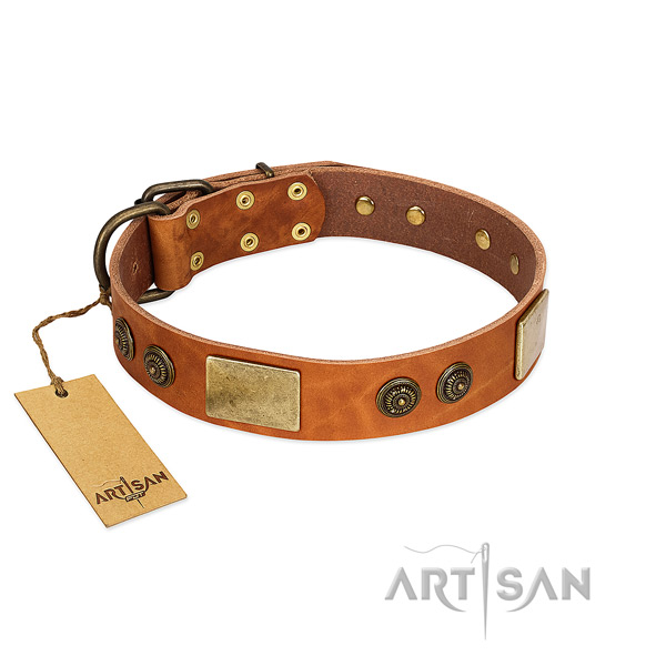 Impressive full grain genuine leather dog collar for easy wearing