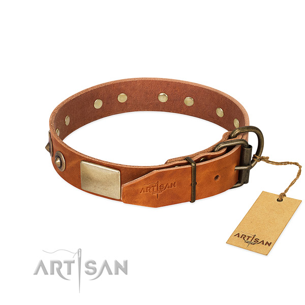 Reliable hardware on walking dog collar