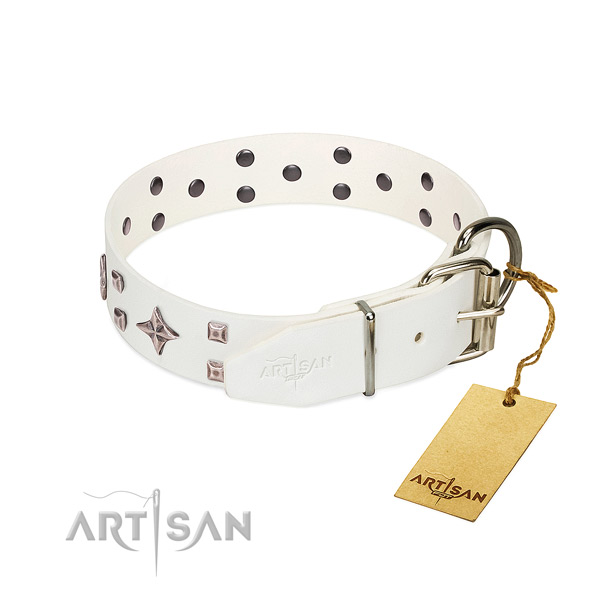 Trendy full grain leather collar for your doggie everyday walking
