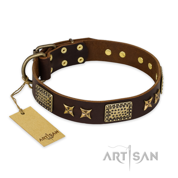 Designer leather dog collar with corrosion proof fittings