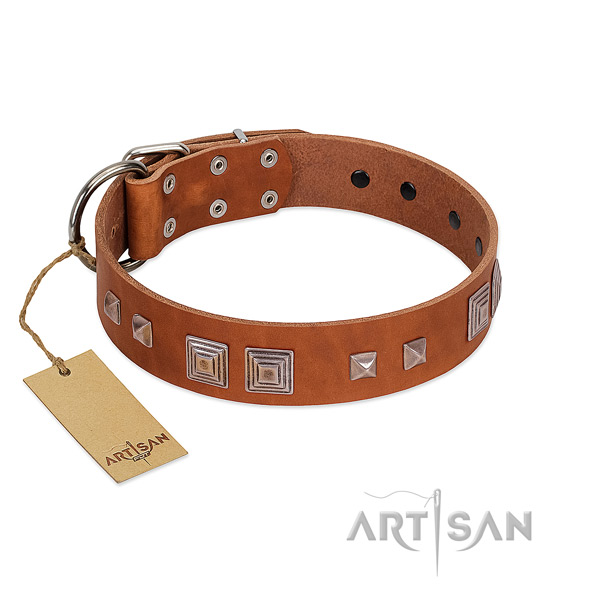 Rust resistant D-ring on leather dog collar for comfortable wearing
