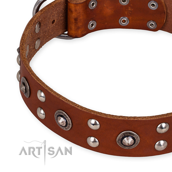 Genuine leather collar with corrosion resistant hardware for your beautiful doggie