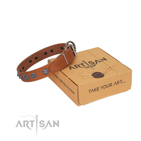 Corrosion resistant traditional buckle on genuine leather dog collar for everyday walking your doggie