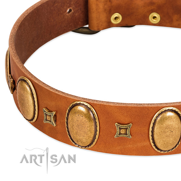 Full grain genuine leather dog collar with rust-proof traditional buckle for stylish walking