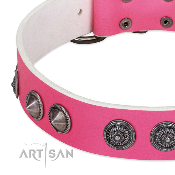 Impressive natural leather collar with adornments for your canine